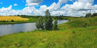 Zonnig de zomer panoramisch landschap met rivier, berkbomen, mooi groen heuvels en gebied van rijpe tarwe stock afbeeldingen