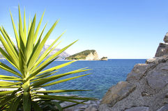 Zonnig eiland Royalty-vrije Stock Afbeelding