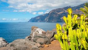 Zonnig eiland Royalty-vrije Stock Foto