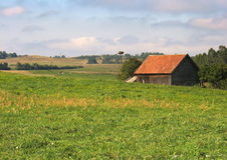 Zonnig landbouwbedrijf royalty-vrije stock foto's