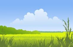 Zonnig landschap Royalty-vrije Stock Foto