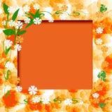 Zonnig oranje frame Royalty-vrije Stock Afbeelding