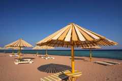 Zonnig strand in Egypte stock afbeeldingen