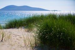 Zonnig strand met zandduinen, lang gras en blauwe hemel Stock Foto's