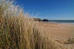 Zonnig strandlandschap Stock Foto