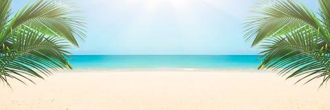 Zonnig tropisch strand royalty-vrije stock afbeelding