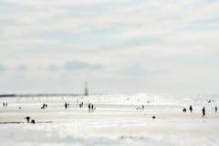 Zonnig zandig strand (Miniatuur modelvervalsing) royalty-vrije stock afbeelding