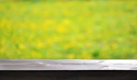 Zonnige abstracte groene aard vage achtergrond met paardebloemen, selectieve nadruk royalty-vrije stock foto