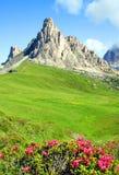 Zonnige alpiene vallei Stock Afbeeldingen