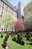 Zonnige Begraafplaats in de stad Royalty-vrije Stock Foto's