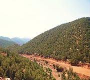 Zonnige berg Stock Fotografie