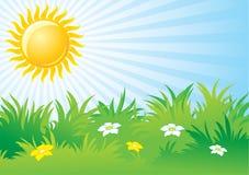 Zonnige dag, achtergrond Stock Foto