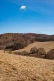 Zonnige dag bij de lenteweide, kleine wolk op hemel Stock Afbeeldingen