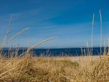 Zonnige dag bij een Schots strand Stock Foto's