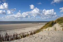 Zonnige dag bij Oostzee Stock Foto's
