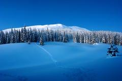 Zonnige dag in de de winterbergen stock foto's