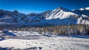 Zonnige dag in de winterbergen Royalty-vrije Stock Foto