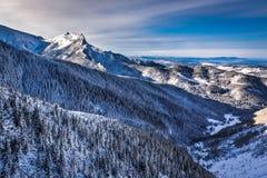 Zonnige dag in de winterbergen Stock Afbeelding