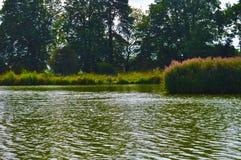 Zonnige dag door het meer Stock Afbeelding
