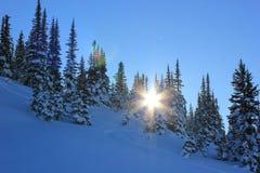 Zonnige dag in een winterwonderland stock foto's