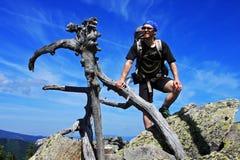 Zonnige dag op de berg Stock Afbeeldingen