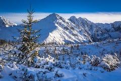 Zonnige dag op de bergsleep Stock Afbeeldingen