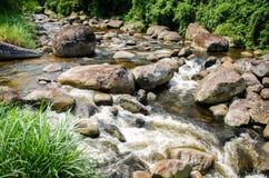 Zonnige dag op het gebied met glashelder water Stock Afbeeldingen