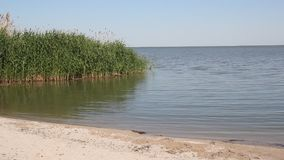 Zonnige dag op het meer stock footage