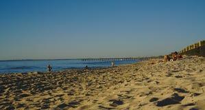 Zonnige dag op strand met weinig mensen het zonnebaden royalty-vrije stock fotografie