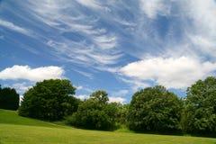 Zonnige dag in park stock foto