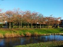 Zonnige de herfstdag in Amsterdam royalty-vrije stock fotografie