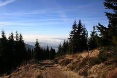 Zonnige de herfstweg aan Dvoracky, de Tsjechische Republiek van Krkonose Stock Fotografie