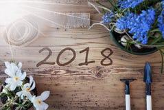 Zonnige de lentebloemen, tekst 2018 Royalty-vrije Stock Afbeelding