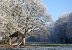 Zonnige de winterdag Stock Fotografie