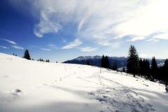 Zonnige de winterdag Royalty-vrije Stock Foto's