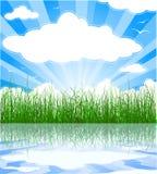Zonnige de zomerachtergrond stock illustratie