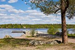 Zonnige de zomerdag en een meer in Finland Stock Foto's