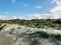 Zonnige duinen van het de herfststrand Stock Afbeeldingen