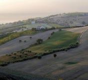 Zonnige heuvel bij dageraad met geïsoleerde olijfbomen en sommige landbouwbedrijven royalty-vrije stock afbeeldingen