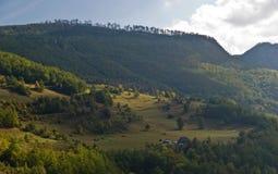 Zonnige heuvels Stock Foto's
