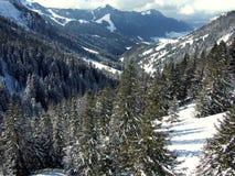 Zonnige landschapsvallei Stock Foto's