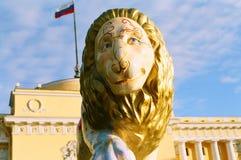 Zonnige leeuw Royalty-vrije Stock Afbeeldingen