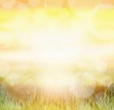 Zonnige naturachtergrond met bokeh en zonstralen op gras Royalty-vrije Stock Foto