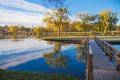 Zonnige ochtend in het park Loshitskypark minsk wit-rusland stock foto's