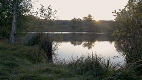 Zonnige ochtend op rivier stock videobeelden