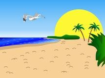 Zonnige Strand, Palmen en Zeemeeuw vector illustratie