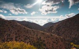 Zonnige woestijn Stock Foto's