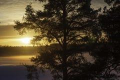 Zonnige zonsondergang Stock Foto's