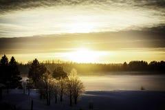 Zonnige zonsondergang Royalty-vrije Stock Fotografie