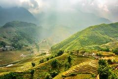 Zonovergoten groene rijstterrassen bij hooglanden van Sa-Pa, Vietnam stock foto's